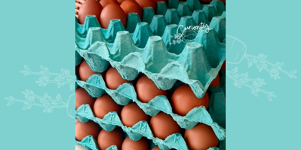 On veut vos boîtes d'œufs !